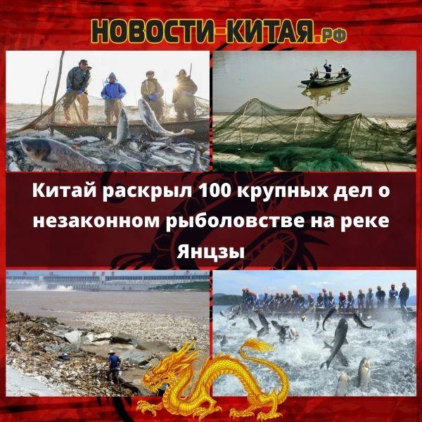 Китай раскрыл 100 крупных дел о незаконном рыболовстве на реке Янцзы