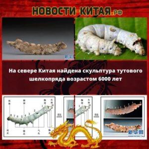 На севере Китая найдена скульптура тутового шелкопряда возрастом 6000 лет
