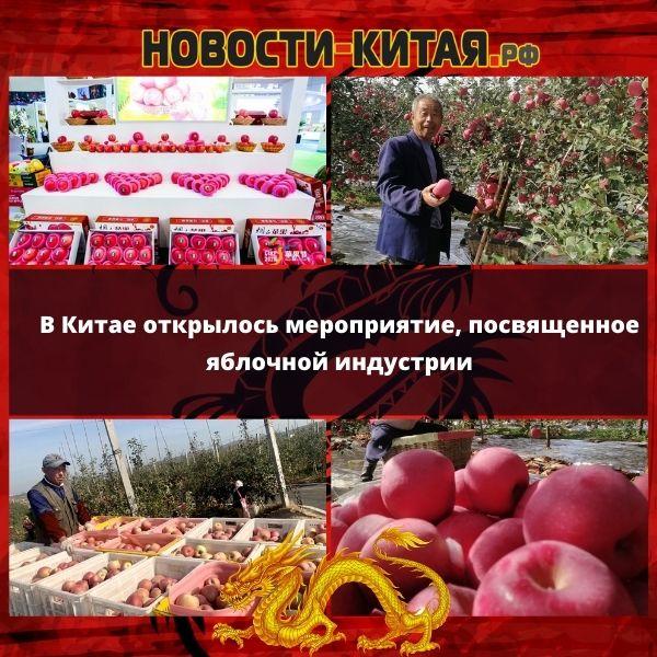 В Китае открылось мероприятие, посвященное яблочной индустрии