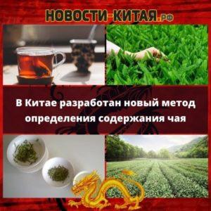 В Китае разработан новый метод определения содержания чая
