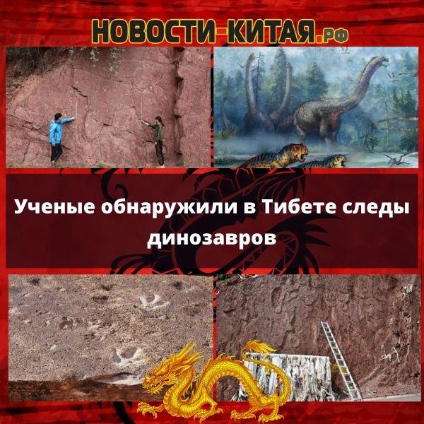 Ученые обнаружили в Тибете следы динозавров