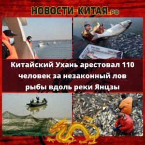 Китайский Ухань арестовал 110 человек за незаконный лов рыбы вдоль реки Янцзы Новости Китая