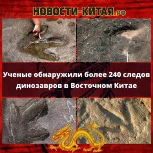 Ученые обнаружили более 240 следов динозавров в Восточном Китае Новости Китая
