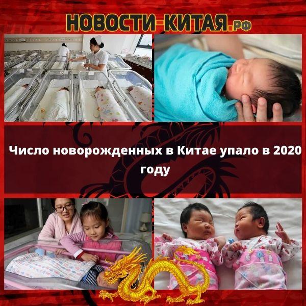 Число новорожденных в Китае упало в 2020 году