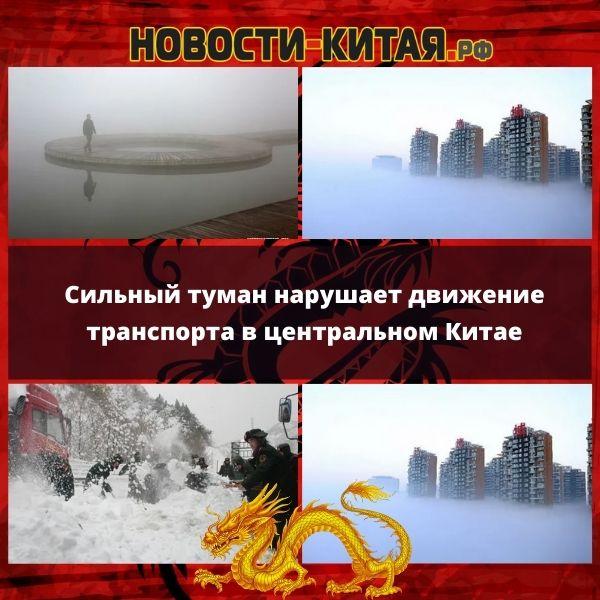 Сильный туман нарушает движение транспорта в центральном Китае