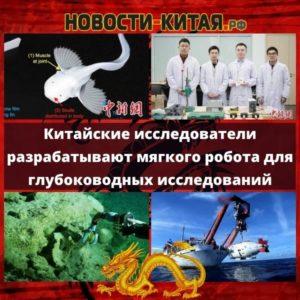 Китайские исследователи разрабатывают мягкого робота для глубоководных исследований