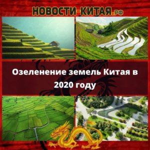 Озеленение земель Китая в 2020 году