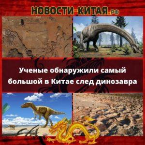 Ученые обнаружили самый большой в Китае след динозавра