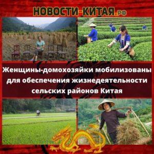 Женщины-домохозяйки мобилизованы для обеспечения жизнедеятельности сельских районов Китая
