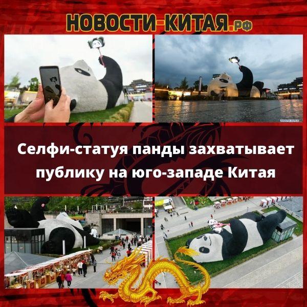 Селфи-статуя панды захватывает публику на юго-западе Китая