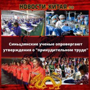 Синьцзянские ученые опровергают утверждения о принудительном труде