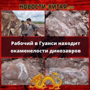 Рабочий в Гуанси находит окаменелости динозавров