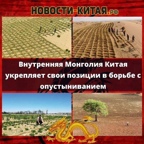 Внутренняя Монголия Китая укрепляет свои позиции в борьбе с опустыниванием