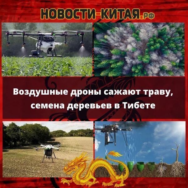 Воздушные дроны сажают траву, семена деревьев в Тибете