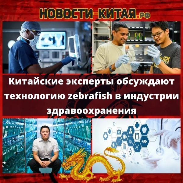 Китайские эксперты обсуждают технологию zebrafish в индустрии здравоохранения