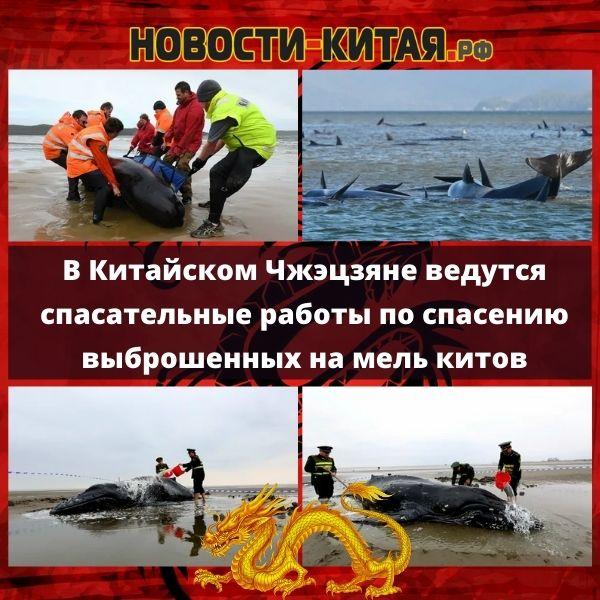 В Китайском Чжэцзяне ведутся спасательные работы по спасению выброшенных на мель китов